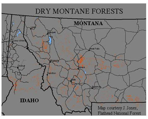 Red represents dry montane forest, 4% of the forested land within this region