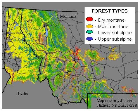 Map Of Usa Forests.Forest Fire In The U S Northern Rockies The Regions Forests Map
