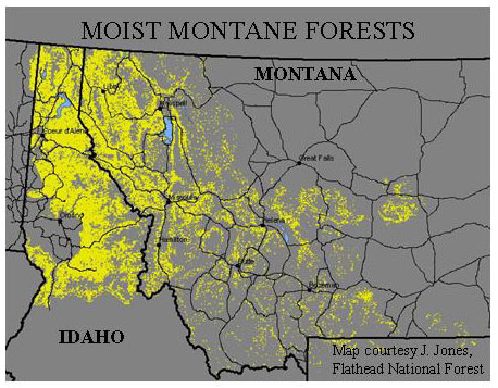 Yellow Represents Moist Montane Forest 52 Of The Forested Land Within This Region